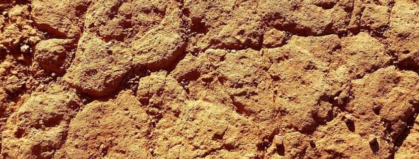 droge huid - foto australië outback